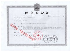 实干税务登记证